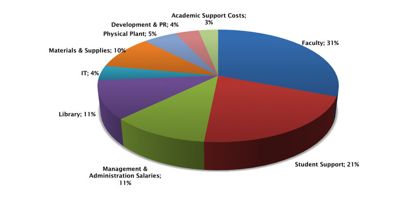 Pie chart show CERGE-EI expenses